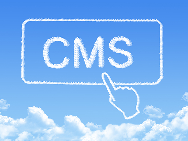 What on earth is CMS?